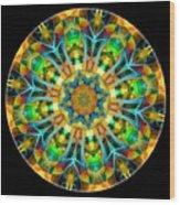 Talisman 3584 Wood Print