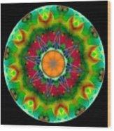 Talisman 3590 Wood Print