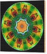 Talisman 3592 Wood Print