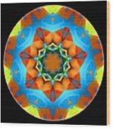 Talisman 3594 Wood Print