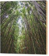 Tall Bamboo Wood Print