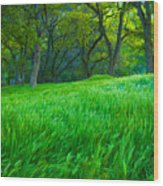 Tall Grass At Twilight Wood Print