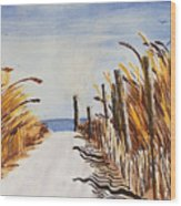 Tall Grass With Drift Fence Wood Print