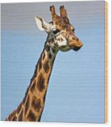 Tall Necked Giraffe Wood Print