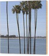 Tall Palms Wood Print