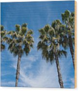 Tall Palms Couples Wood Print