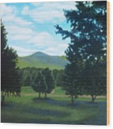 Tall Pines Surround Your Green Hills Wood Print