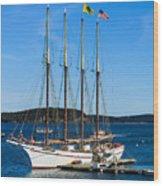 Tall Sailboat In Acadia Wood Print