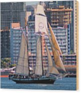 Tall Ship In San Diego  Wood Print