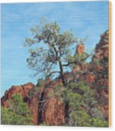 Tall Trees And Rocky Spires Wood Print