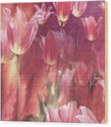 Tall Tulips Wood Print