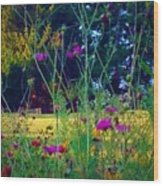 Tall Wisphy Flowers Of Pink Wood Print