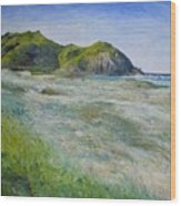 Tallows Beach Byron Bay Northern Nsw Australia 2002  Wood Print