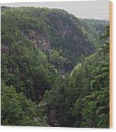 Tallulah Gorge 12 Wood Print