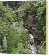 Tallulah Gorge 9 Wood Print