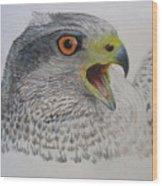 Talon Wood Print