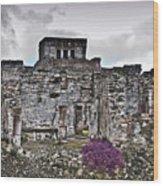 Talum Ruins 6 Wood Print