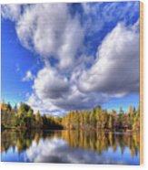 Tamarack Reflections In The Adirondacks Wood Print