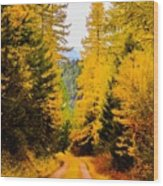 Tamarack Trail Wood Print