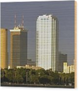 Tampa And Bayshore Wood Print
