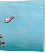 Tampa Bay Tarpon Wood Print