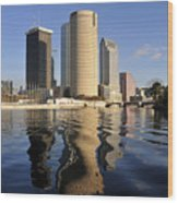Tampa Florida 2010 Wood Print