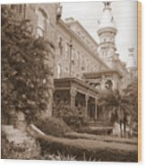 Tampa Gem In Sepia Wood Print