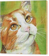 Tan And White Domestic Cat Wood Print by Cherilynn Wood