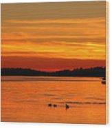 Tangerine Dream Wood Print