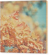 Tangerine Leaves And Turquoise Skies Wood Print