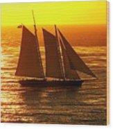 Tangerine Sails Wood Print
