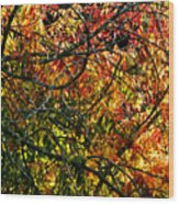 Tangled Branches Wood Print