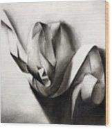 Tangled In Light Wood Print
