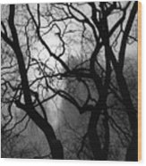 Tangled Trees Wood Print