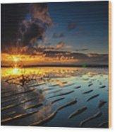 Tanjung Aru Beach Wood Print