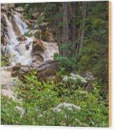Tanner Flat Falls Wood Print