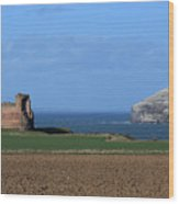 Tantallon Castle And The Bass Rock Wood Print