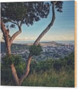 Tantalus Views Wood Print