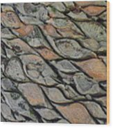Tanzania Tree - Kenya Wood Print