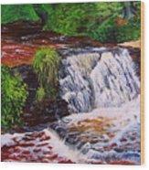 Taqua Falls Wood Print