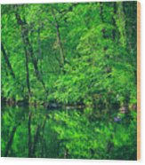 Tar River Reflection Wood Print