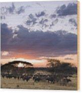 Tarangire Sunset Wood Print