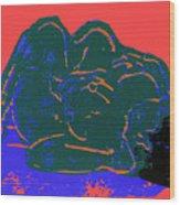Tarbaby 2 Wood Print by Adam Kissel