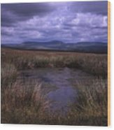 Tarn On The Slopes Of Whernside With Pen-y-ghent On The Horizon Yorkshire Dales England Wood Print