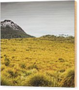 Tasmania Mountains Of The East-west Great Divide  Wood Print