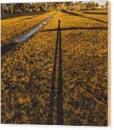 Tasmanian Sunset Explorer Wood Print