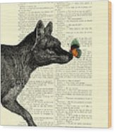 Tasmanian Tiger And Orange Butterfly Antique Illustration On Dictionary Page Wood Print