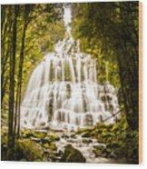 Tasmanian Waterfalls Wood Print