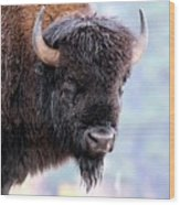 Tatanka Portrait Wood Print