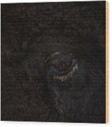 Tatonka Wood Print